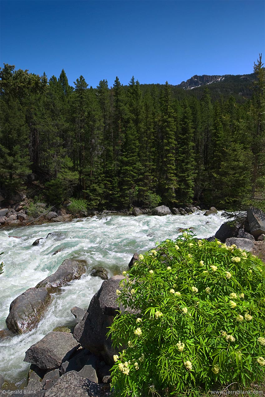 #08298 - Whitewater on the upper Boulder River, Absaroka Mountains, Montana - photo by Jerry Blank